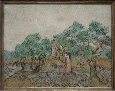 Gogh The Olive Orchard,1889
